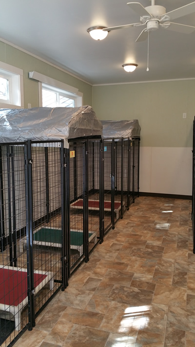 The Dog Pad - Dog Boarding in Florence, Montana, grooming, doggie daycare, pet nutrition, dog bathing